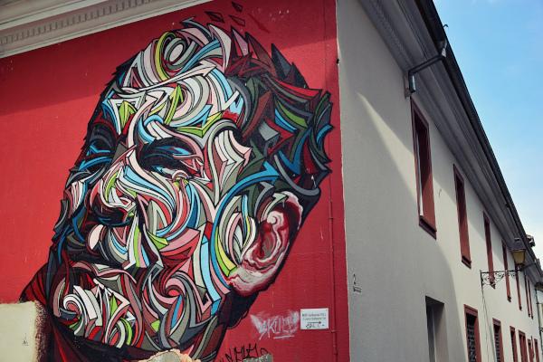 Mulhouse : des murs peints, au street art 14