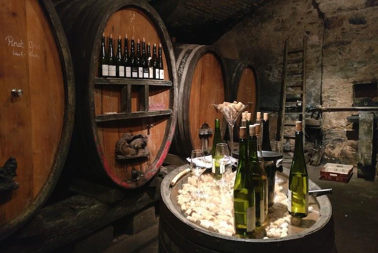 Déguster du vin, dans une vraie cave à vins ! 10