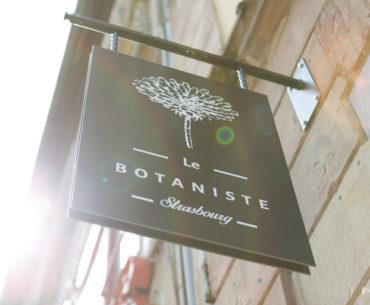 Le Botaniste Strasbourg, merveilleux & créatif 7