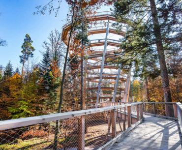 5 idées de balades en Vosges et Forêt Noire
