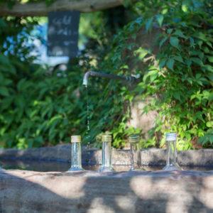 Des fontaines de Schnaps en Forêt-Noire !