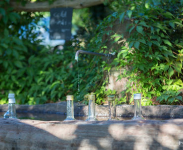 Fontaine Schnaps Forêt Noire