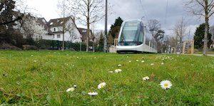Les 20 événements qui vont rythmer ton printemps à Strasbourg (et alentours) ! 11