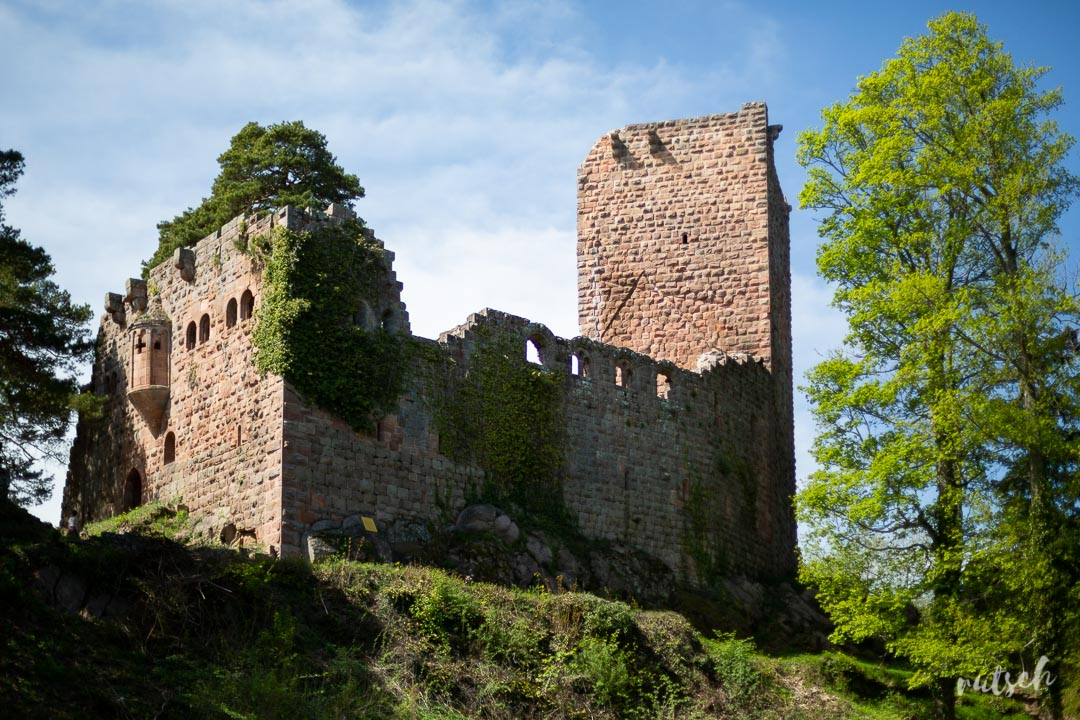 Mont Sainte-Odile sans voiture - Château du Landsberg
