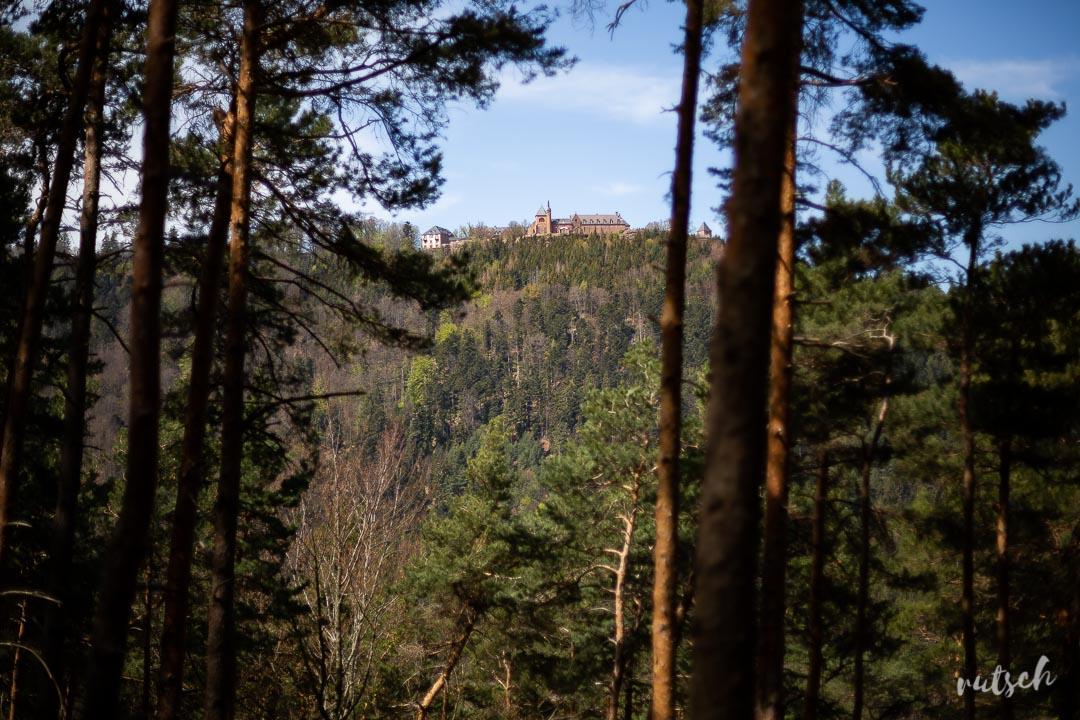 Mont Sainte-Odile sans voiture
