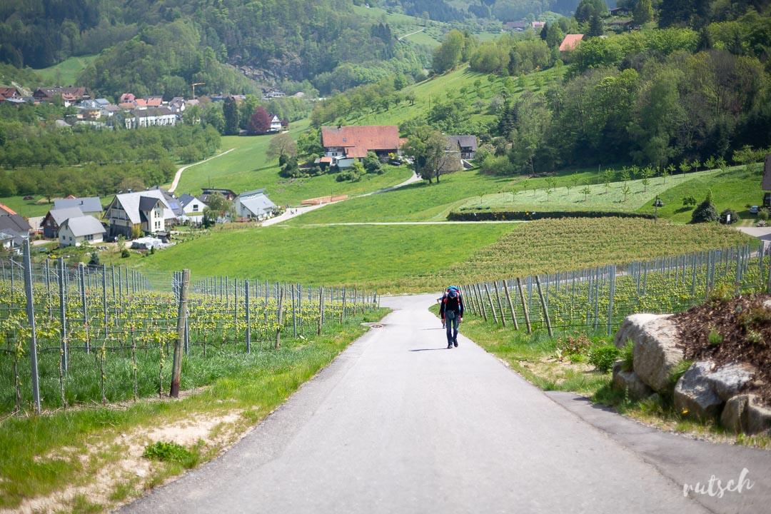 Randonner sans voiture : le sentier Schnaps de Kappelrodeck 12