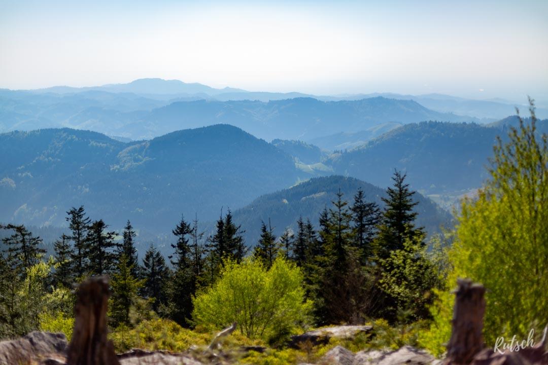 Lotharpfad randonnée Forêt Noire