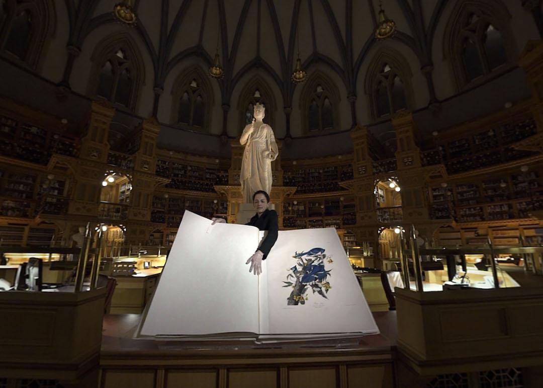 La Bibliothèque, la nuit - Réalité Virtuelle ©Exmachina