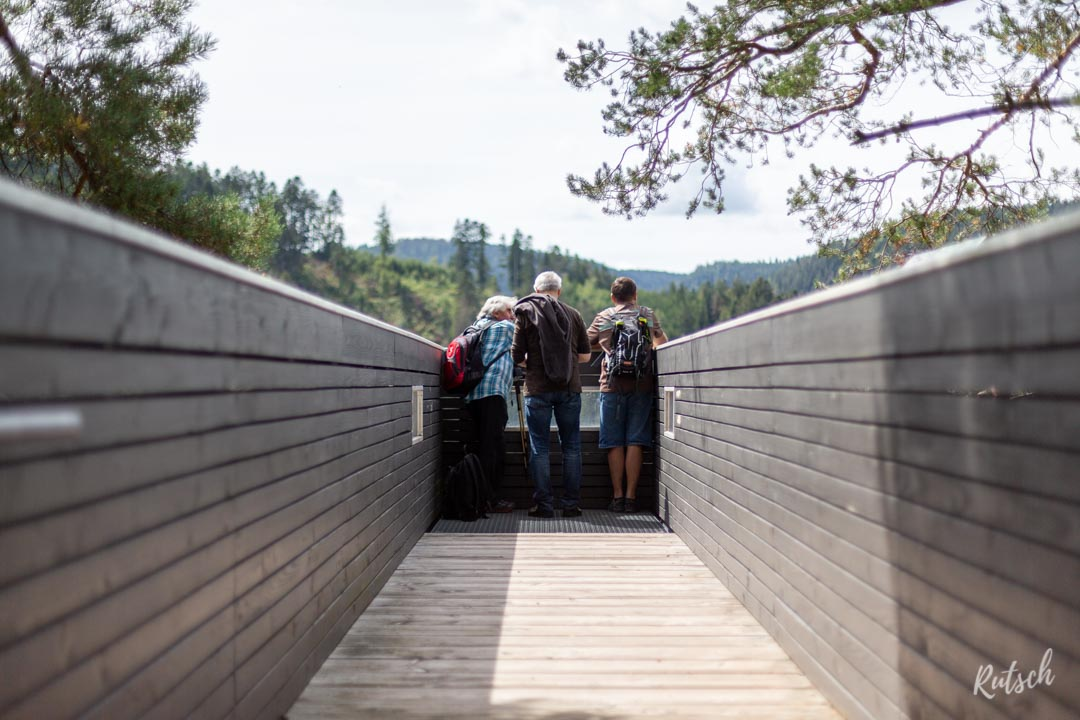 Plateforme d'observation du Schwarzwaldbahn erlebnispfad