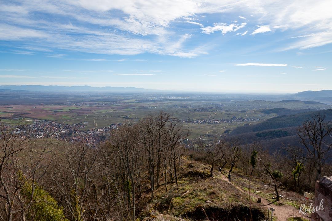 Forêt-Noire et Alpes Bernoises