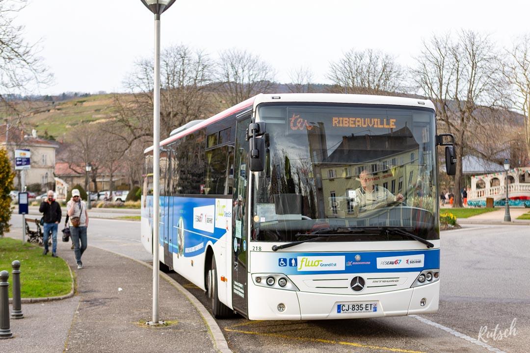 Car TER Sélestat - Ribeauvillé