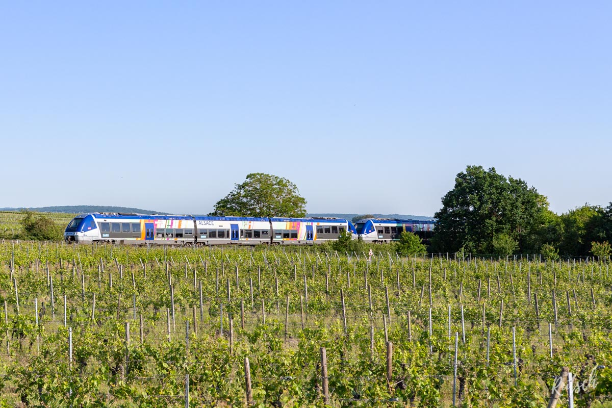 TER Alsace Vignoble