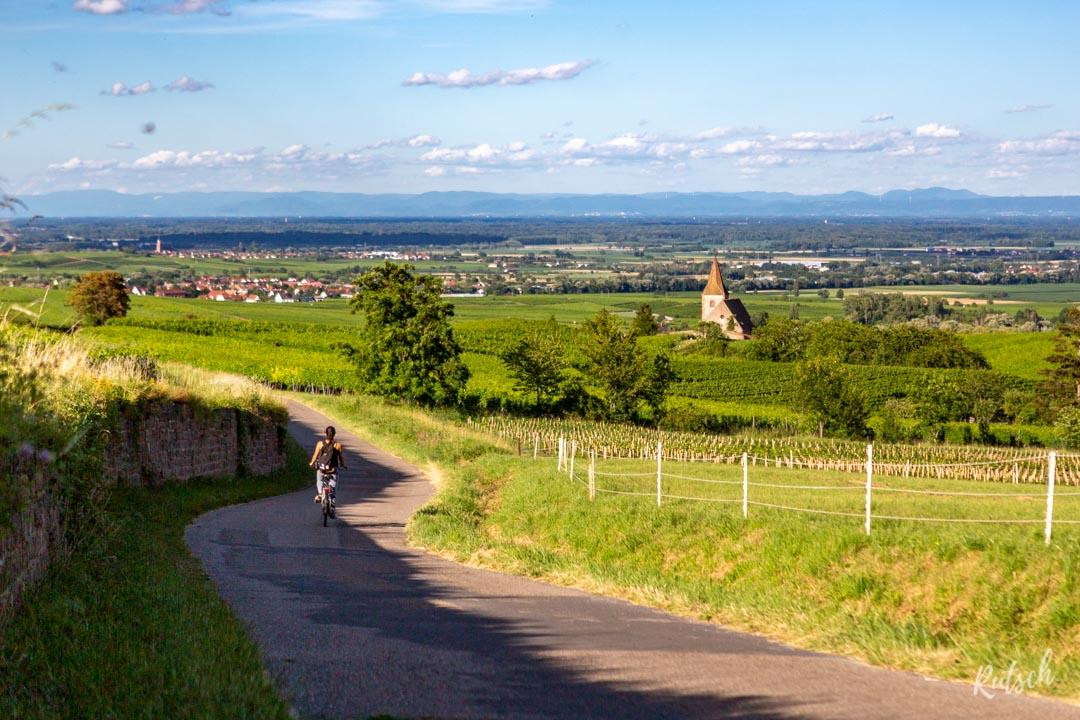 Route des Vins d'Alsace velo - Hunawihr