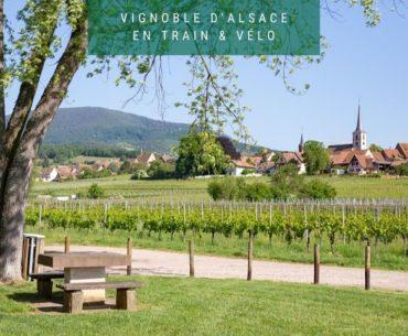 Cover - Mittelbergheim Alsace