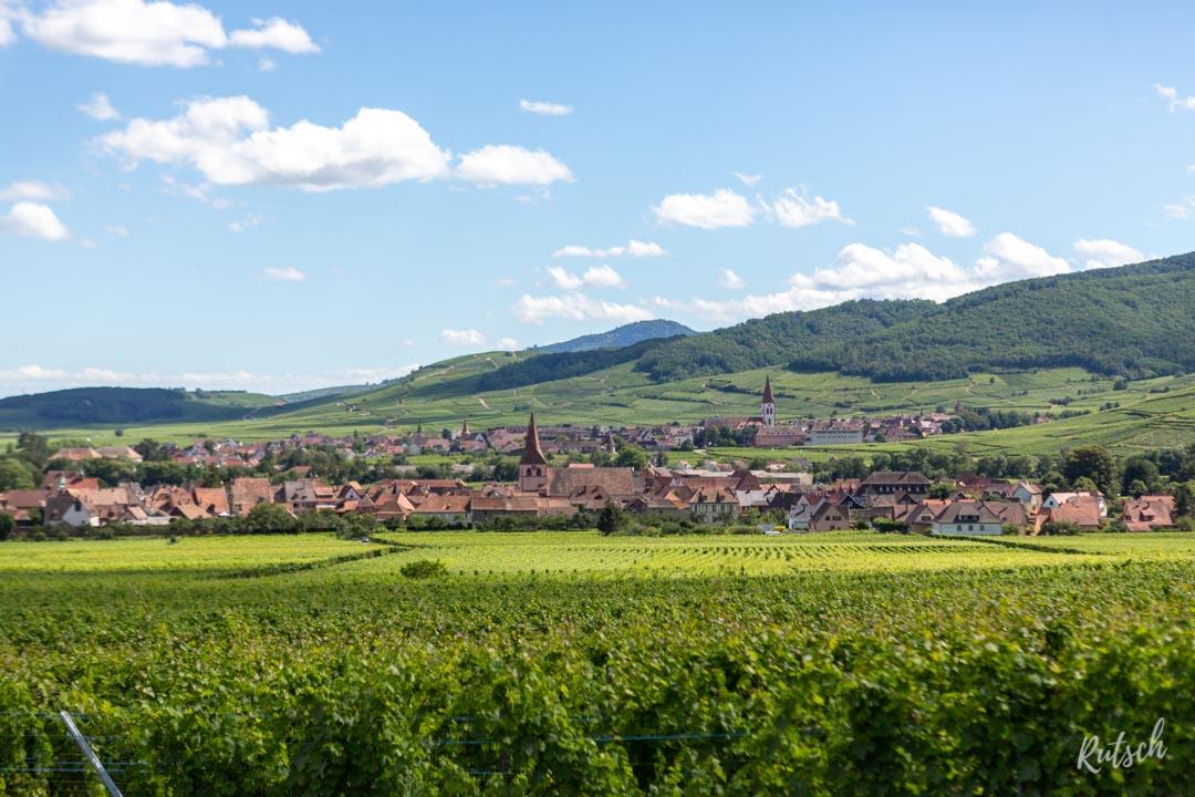 Route des Vins d'Alsace velo - EuroVelo5 - Kientzheim Ammerswihr