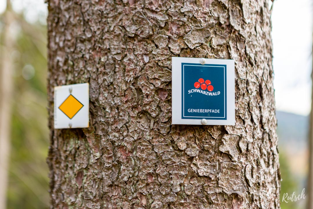 Balisage Mummelsee-Hornisgrindepfad