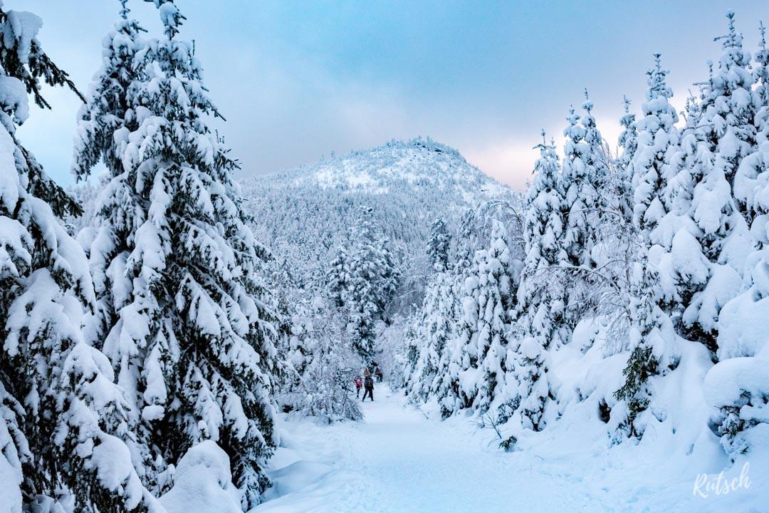 Donon Alsace sous la neige