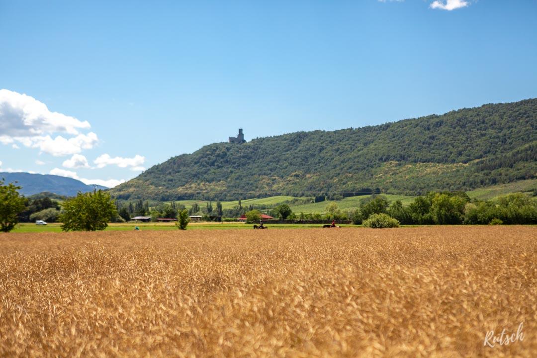 Route des Vins d'Alsace château Ortenbourg