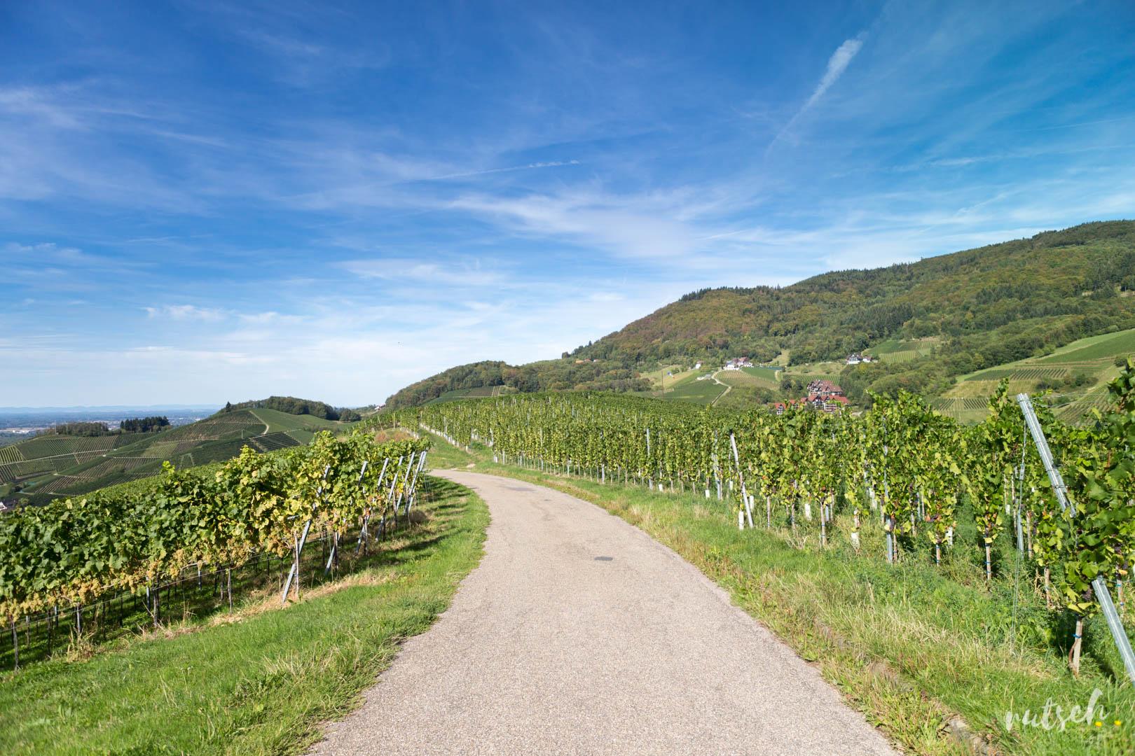 Schnapsbrunnen chemin de randonnée Sasbachwalden